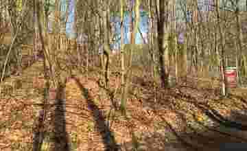 Bouwgrond in Rotselaar